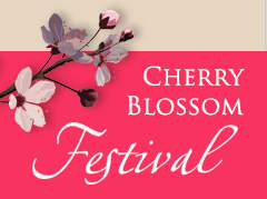 Washington DC Hotels Cherry Blossom Festival
