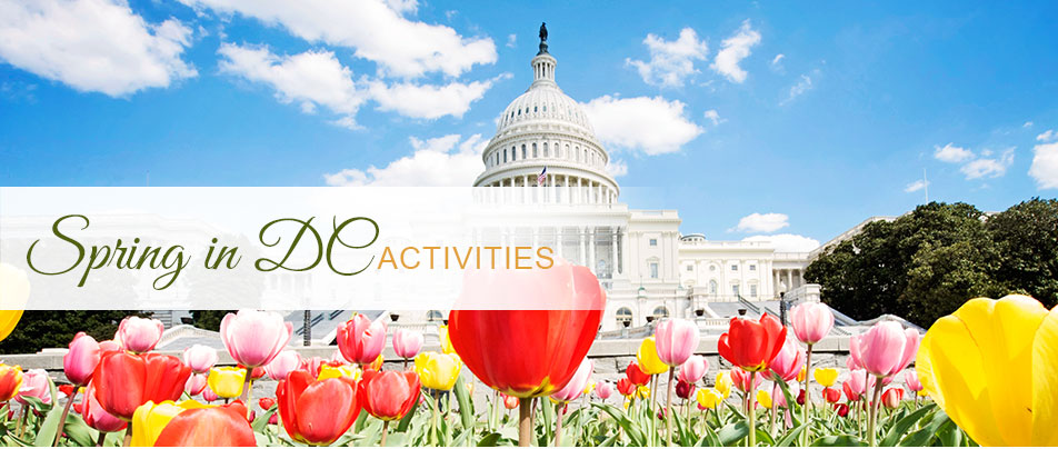 Washington DC Spring Things to Do -Your DC Hotels
