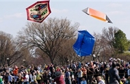 flying kites in dc during the cherry blossom festival